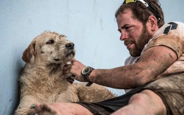 Adiós acción y comedia: Mark Wahlberg protagonizará filme de drama Captura-de-pantalla-2019-07-28-a-las-11.43.04-a.m.-600x375