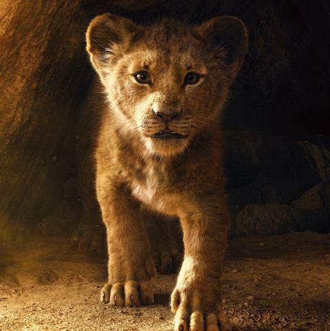 ¡No era tan esperada! La película que le arrebató un récord a Disney 1542927533-lion-king-poster