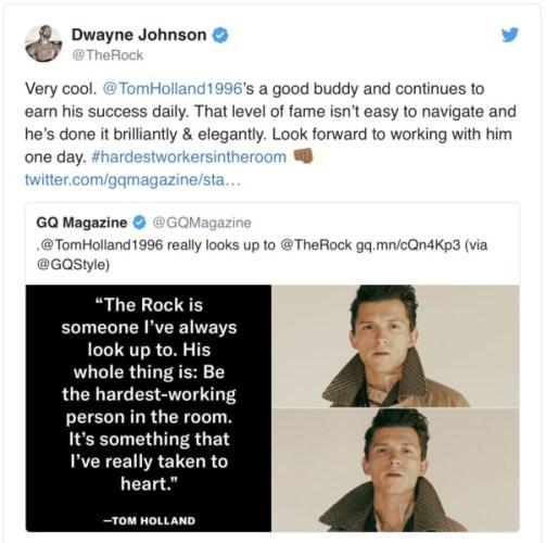 ¿Dwayne Johnson planea película con Tom Holland? Captura-de-Pantalla-2019-09-06-a-las-12.13.28-503x500