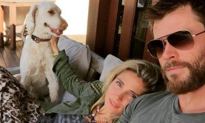 Chris Hemsworth y Elsa Pataky encuentran a su perro
