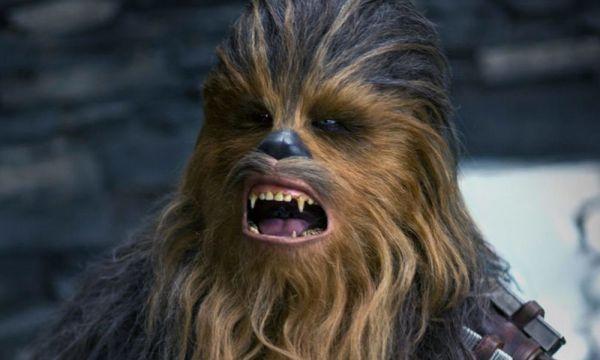 ¿Por qué los Ewoks reemplazarán a los Wookiees en Star Wars? ewoks-reemplazaron-a-los-wookiees-600x360