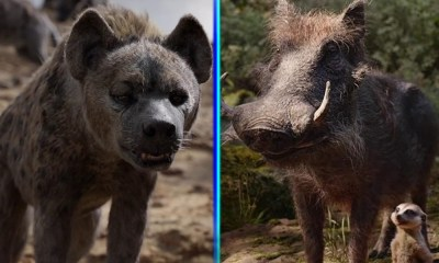 Disney+ hará un spin-off de Timón y Pumba