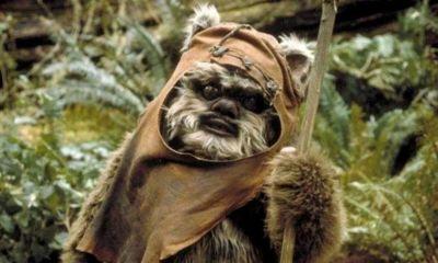 ewoks de Star Wars sin pelaje
