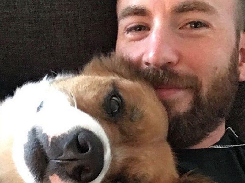 Chris Evans confiesa porque decidió tatuarse a su perro