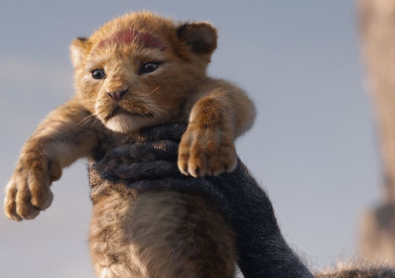 actores para The Lion King 2
