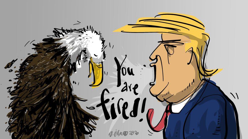 fallen-eagle