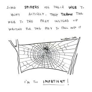 science, curious, curiosity, fun, funny, humor, spiders, spiderweb, hunt, adaptation, predator