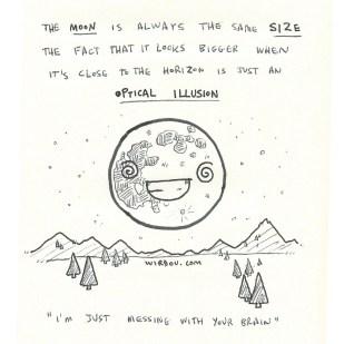 science, curious, curiosity, fun, funny, humor, moon, illusion, size, horizon, universe, astronomy