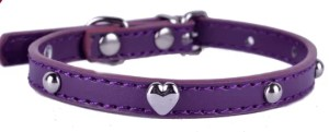 PAW PurpleProng Collar For Small Dogs