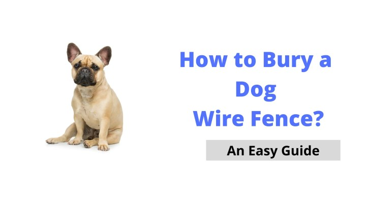 How to Easily and Safely Bury a Dog Wire Fence