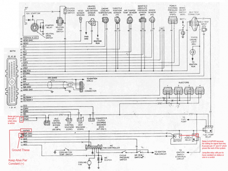 ford tfi module wiring diagram imageresizertool com GM Trailer Wiring Harness Scosche Wiring Harness for GM