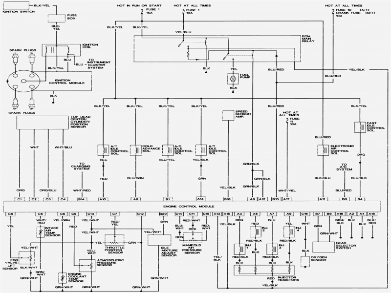 2003 Honda Accord Wiring Harness Diagram  Wiring Forums