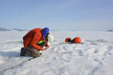 Jill intently working on instrument spacing on her mooring line on the Milne Ice Shelf.