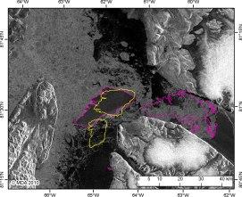 ᓯᑰᒋᐊᓐᖓᓚᐅᖅᓯᒪᔪᖅ Petermann ᓂᓚᒃ ᕿᑭᖅᑕᖅ2010 (ᐊᐅᐸᔮᖓᔪᖅ), ᐃᖏᕋᓂᖃᓚᐅᖅᑐᖅ ᓯᓚᑖᓄᑦ ᐊᒻᒪ ᓯᖁᓪᓗᖅᑐᓂ ᒪᕐᕈᕈᖅᑐᓂ (ᖁᖅᓱᖅᑐᖅ) Joe Island−ᒥᑦ Kennedy Channel−ᒥ, ᓯᑎᐱᕆ 9, 2010. CI2D3 ᑐᑭᓯᒋᐊᕈᑏᑦ ᑎᑎᕋᖅᑕᐅᓯᒪᔪᑦ ᖃᓄᐃᓘᖃᑦᑕᐅᑎᓂᖏᑦ ᓯᑯᓪᓗᐊᑕᖓᓂᑦ ' (PII: 248 km2 ᓯᑎᐱᕆᐅᓕᖅᑎᓪᓗᒍ 9) ᐊᒻᒪ ᓯᑯᓪᓗᐊᑕᒦᖔᖅᓯᒪᔪᑦ, ᐊᒻᒪ PII-A (85 km2) ᐊᒻᒪ PII-B (158 km2) ᓂᒋᖓᓄᑦ ᐅᐊᓐᓇᖓᓄᓪᓗ, ᓂᒋᕐᒦᖔᖅᑐᓂ. Radarsat-2 ᑐᑭᓯᒋᐊᕈᑏᑦ ᐊᒻᒪ ᓱᓇᑐᐃᓐᓇᐃᑦ © MacDonald, Dettwiler and Associates Ltd., 2010 – ᐊᔪᕆᑦᑕᐅᔭᕆᐊᖃᖏᑦᑐᑦ.