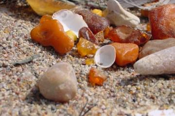 Schatzfieber – Auf Schatzsuche am Strand