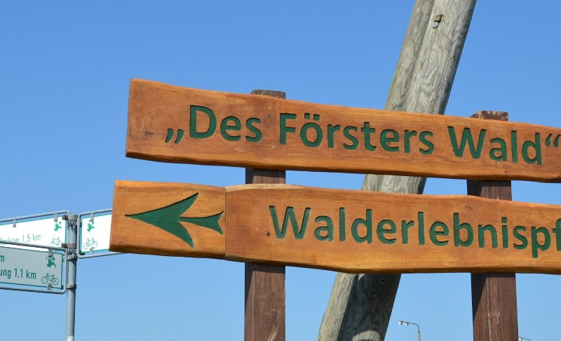 """""""Des Försters Wald"""" – Natur erleben und erlernen"""