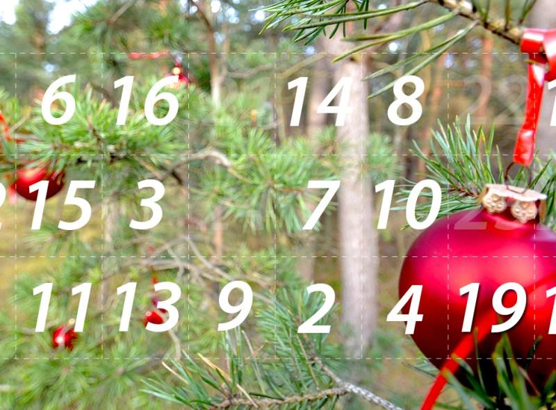 Adventskalender 19. Dezember 2014: Ab ins Fichtendickicht