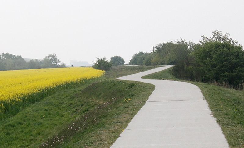 Mit dem Fahrrad auf die Insel Ummanz