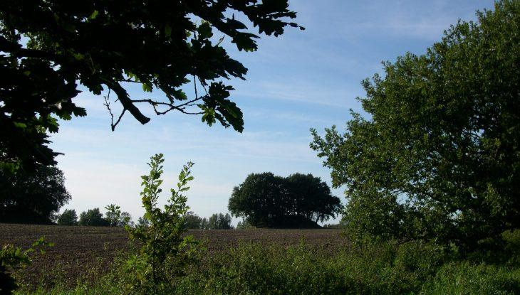 Die Hügelgräber von Woorke und eine Zwergensage