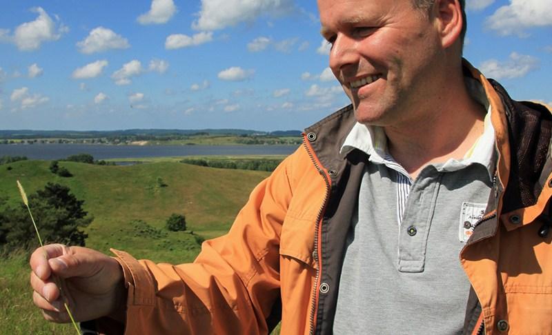 Schwalbenwurz und Ochsenzunge im Biosphärenreservat Südost-Rügen