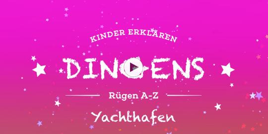"""""""Dingens – Rügen von A bis Z"""": Y wie Yachthafen"""