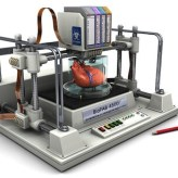 Bioprinting Organs - Organovo1
