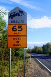 Was bitte soll dieses Schild bedeuten? Achtung, Mechaniker-Wallaby oder was?