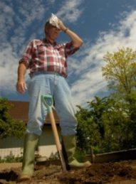 farmer wiping sweat