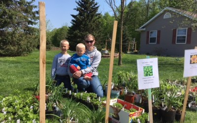 Local Bonduel Woman's Green Thumb Yields 800+ Perennials