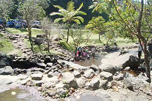 Sungai Kebun Raya Cibodas