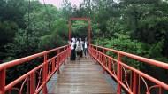 Suasana Hutan Kota 2 BSD City, Serpong, Tangerang Selatan, Banten, Kamis (7/4). Kompas/Amanda Putri (UTI) 07-04-2016