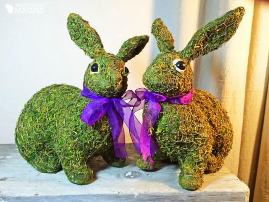 moss rabbits