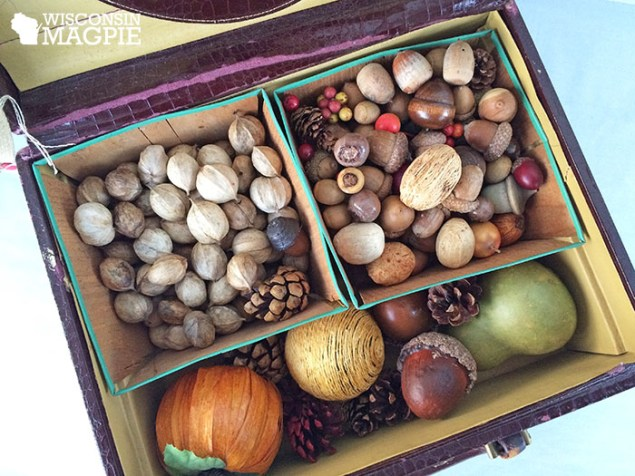 nuts and acorns