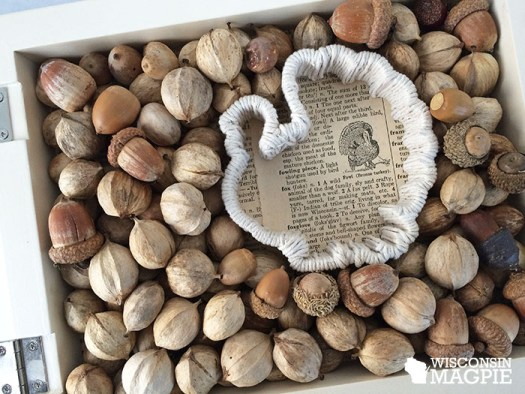 turkey and nuts in shadow box