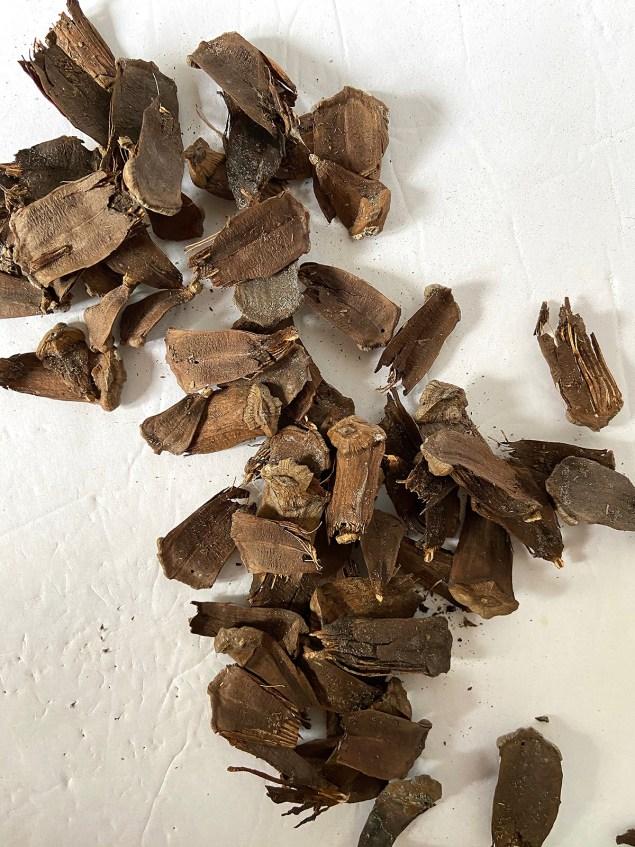 Pinecone scales