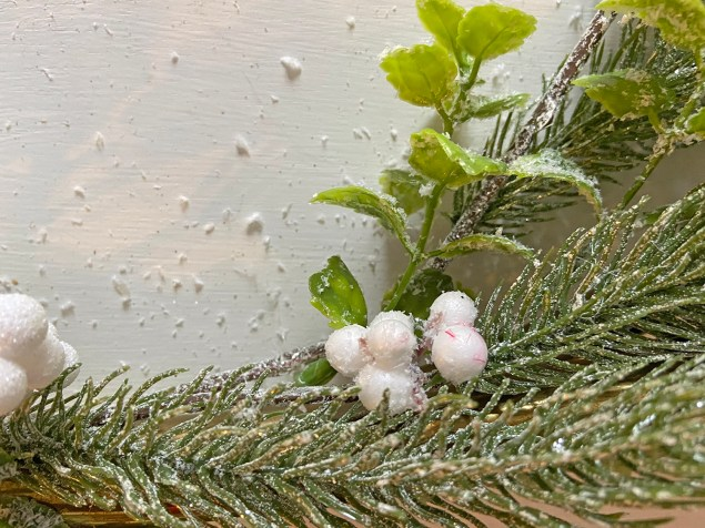 frosted evergreen stems