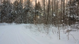 Moccasin lake ski trail is a hidden gem