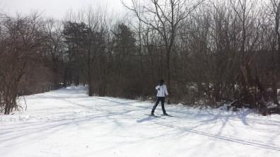 Elver Park Cross Country Skiing
