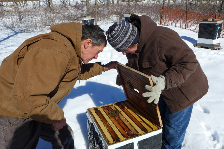 Farmer and beekeeper Harriet Behar and her husband Aaron Brin check on the bees at Behar's Crawford County farm. Behar has 25 beehives on her 216-acre farm in southwestern Wisconsin.