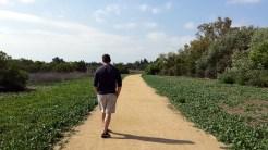 Darin getting his nature walk on.