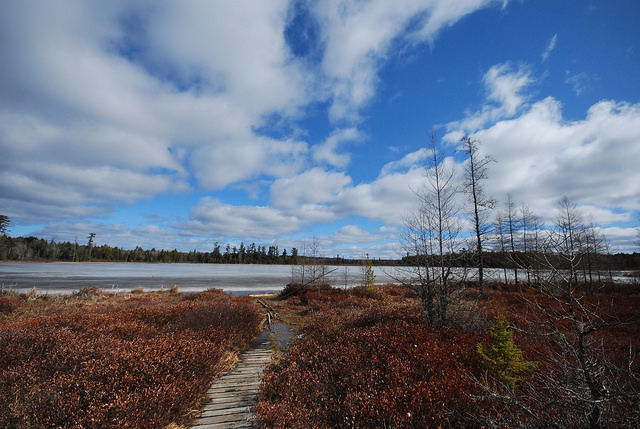 Shelp Lake