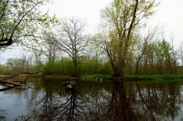 East Branch of the Milwaukee River