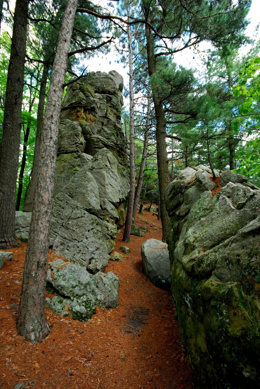 Trail through the Rocks
