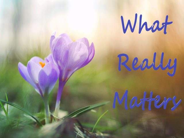 "A gentle nudge to ""What really matters""!"