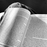Reading Inspires the Mind