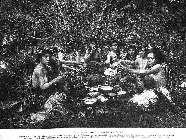 digital history of Hawaii   society