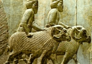 digital history of the Near East | food