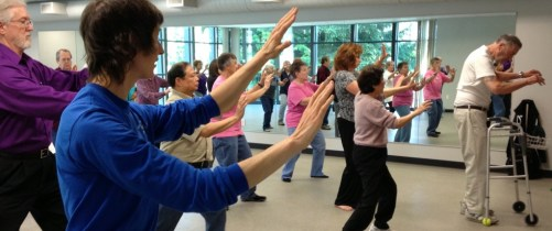 Senior Tai Chi with Wise Orchid Martial Arts