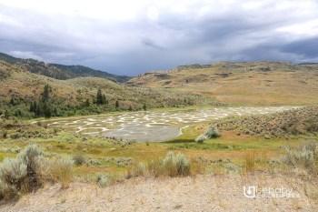 加拿大景點 | 特殊景觀拍照推薦景點。Spotted Lake斑點湖