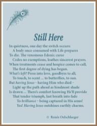 Still Here, sonnet, poetry, poem, Kara Tippetts, dying